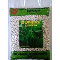 Buncis Kenya 1 kg