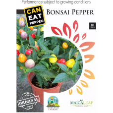 Cabe Hias Bonsai Pepper Maica Leaf 10s Seeds