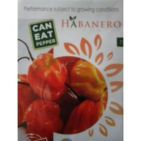 Benih cabe Habanero Hot Pepper 20s