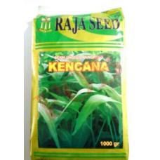 Benih Raja Seed Kangkung Kencana 1000gr