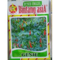 Benih/bibit Cabe Rawit Hijau Genie (Bintang Asia)