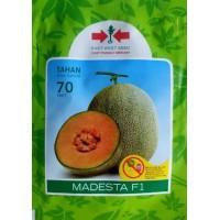 Melon MADESTA F1 200s