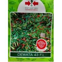 Cabe Rawit Dewata 43 F1