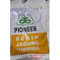 Jagung Hibrida Pioneer 21