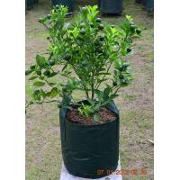 Planter Bag 25 Liter