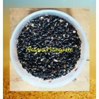 Akasia Mangium 1kg