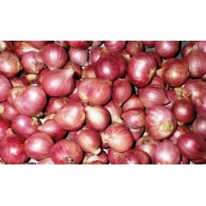 Bawang Merah Umbi Varietas Thailand