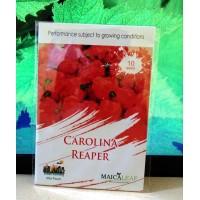 Benih cabe Carolina reaper pepper 10s maicaleaf