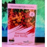 Benih cabe Habanero Hot Pepper 20s