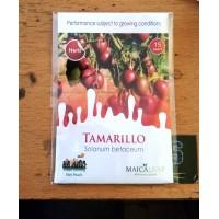 Terong Belanda Maicaleaf - TAMARILLO